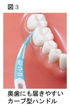 奥歯にも届きやすいカーブ型