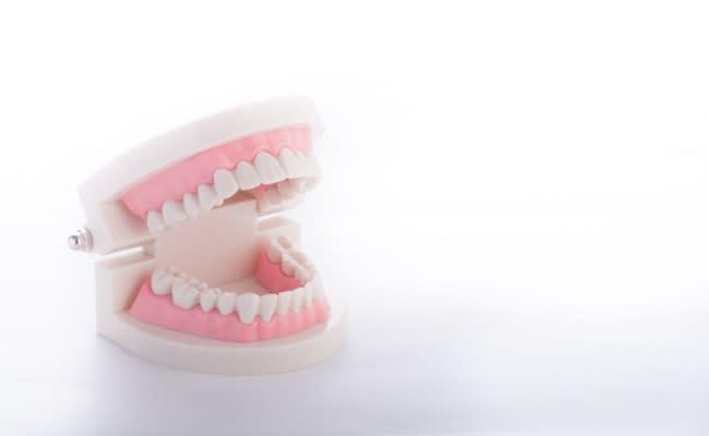 生えてきた子どもの歯の形がおかしい…癒合歯って何?!【ママの体験談】