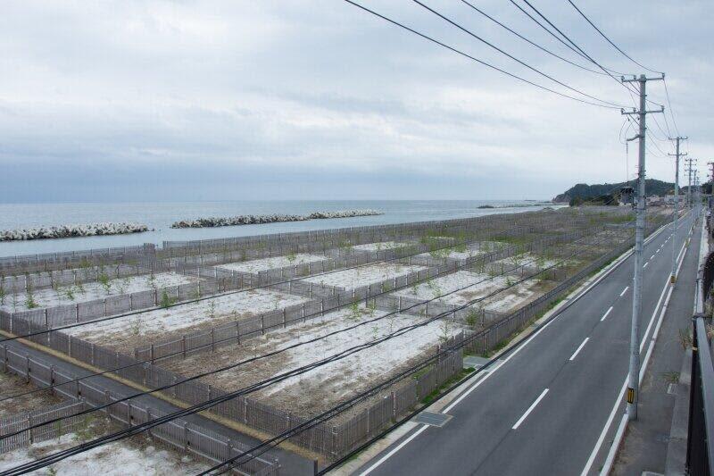 【IEEIだより】日本の医療は災害に強くなったのか? 東日本大震災、福島原発事故から10年を振り返る(越智小枝)