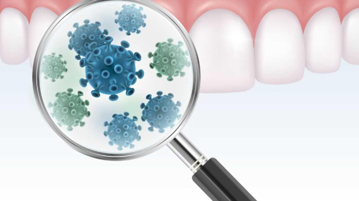 新型コロナウイルスは、歯肉から肺に入る可能性があると専門家が発表